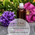 Bain d'huile – Ces huiles végétales géniales pour vos cheveux