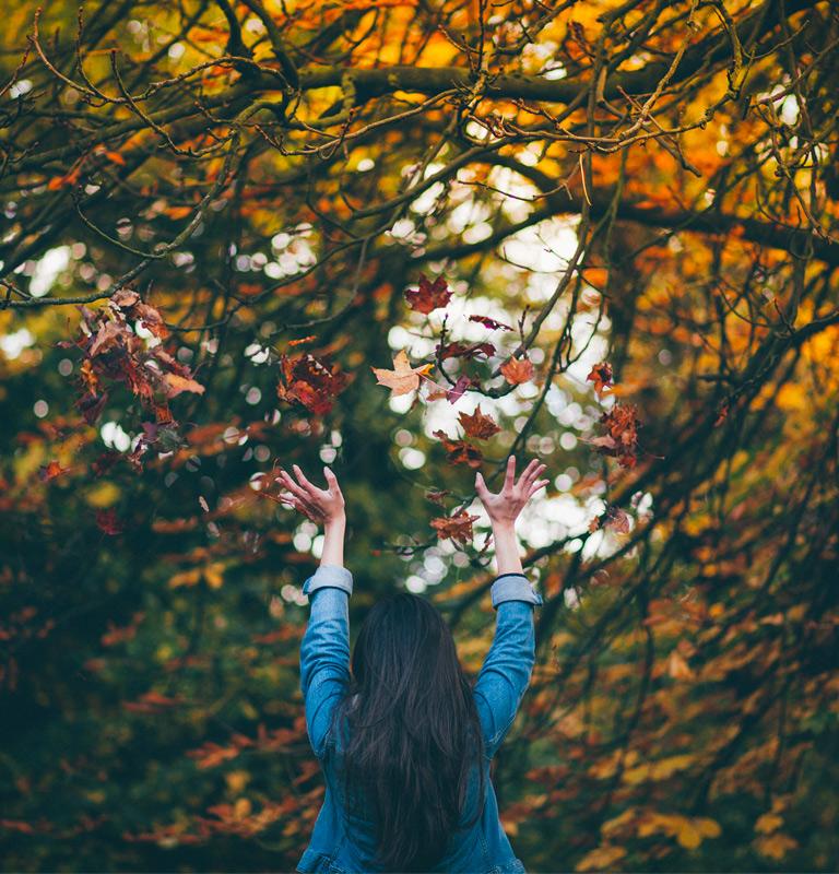 pourquoi-cheveux-tombent-automne